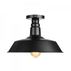 rowdy LED ceiling fixture